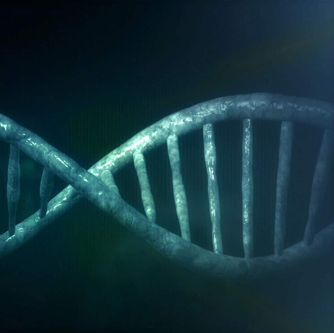 Genetics and a blue DNA chain