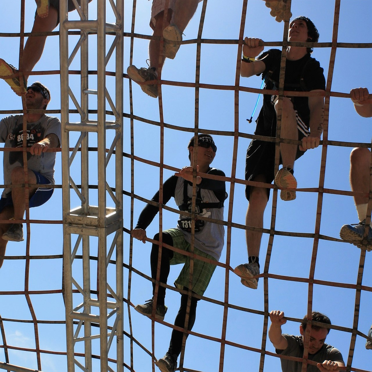 A group of people climbing on a net
