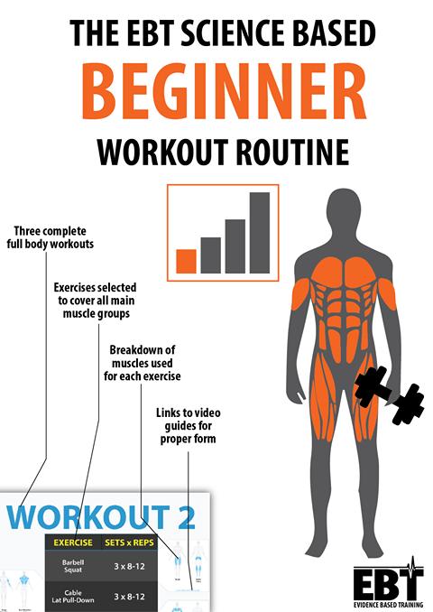 Workout Program Beginner